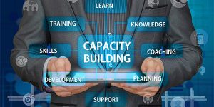 pengertian Capacity building