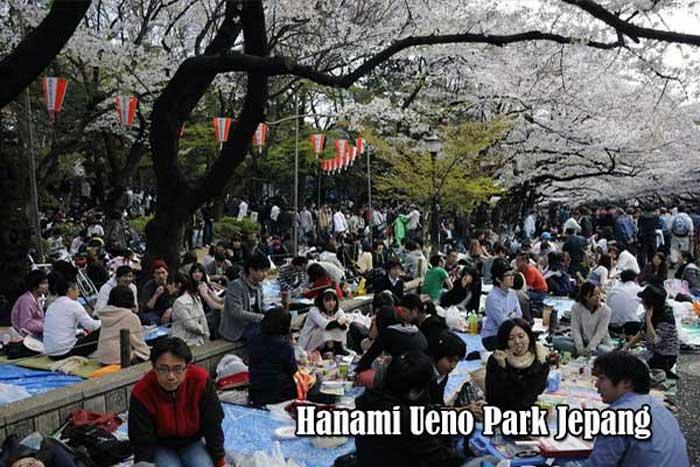 Tradisi Hanami Di Ueno Park Jepang