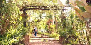 Pondok Indah Banyuwangi